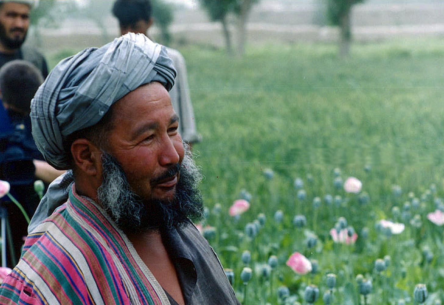 Хоким-палван, хозяин опиумной плантации, уезд Калай-Зал провинции Кундуз, апрель 2002 года. Фото А.А. Князева